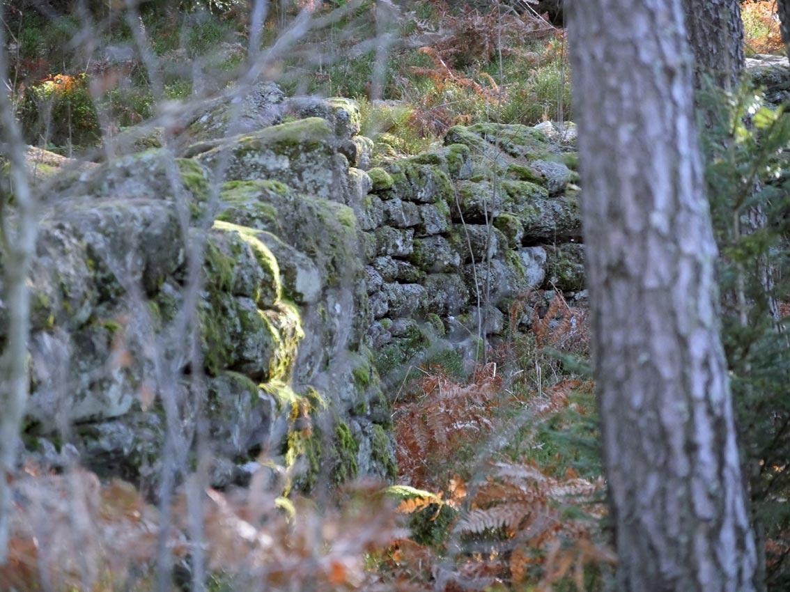 Heidenmauer (Mur Païen) | Bild: Andreas Bubrowski